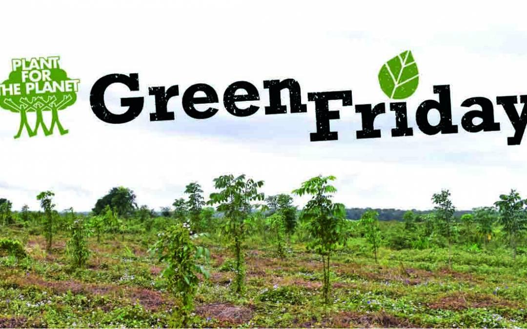 Zusammen machen wir grün – Fazit zum Green Friday